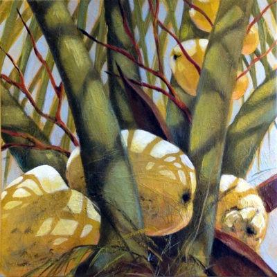 Coconuts No. 1