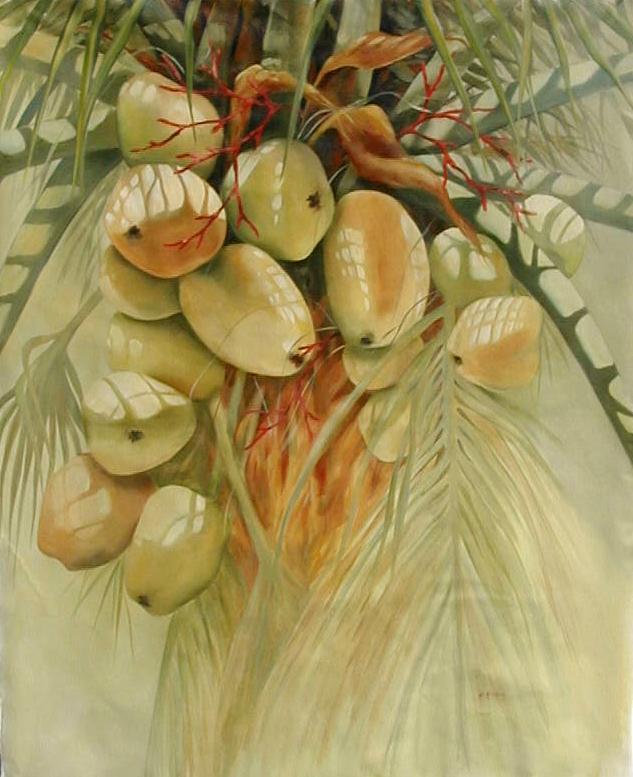 Coconuts No. 2