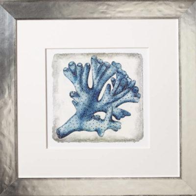 Indigo Coral No. 2