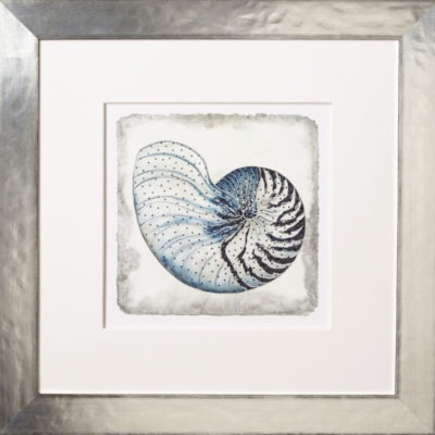 Indigo Shell No. 3