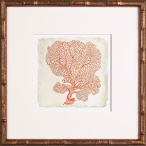 coral artwork, One Coast Design, Michelle Woolley Sauter