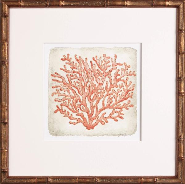 coral art, One Coast Design, Michelle Woolley Sauter