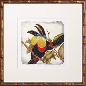 toucans, One Coast Design, Michelle Woolley Sauter