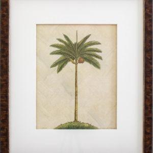 palm tree, One Coast Design, Michelle Woolley Sauter