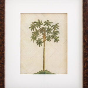 Small Palm on Wood #4 in Ralph Lauren Tortoise, One Coast Design, Michelle Woolley Sauter